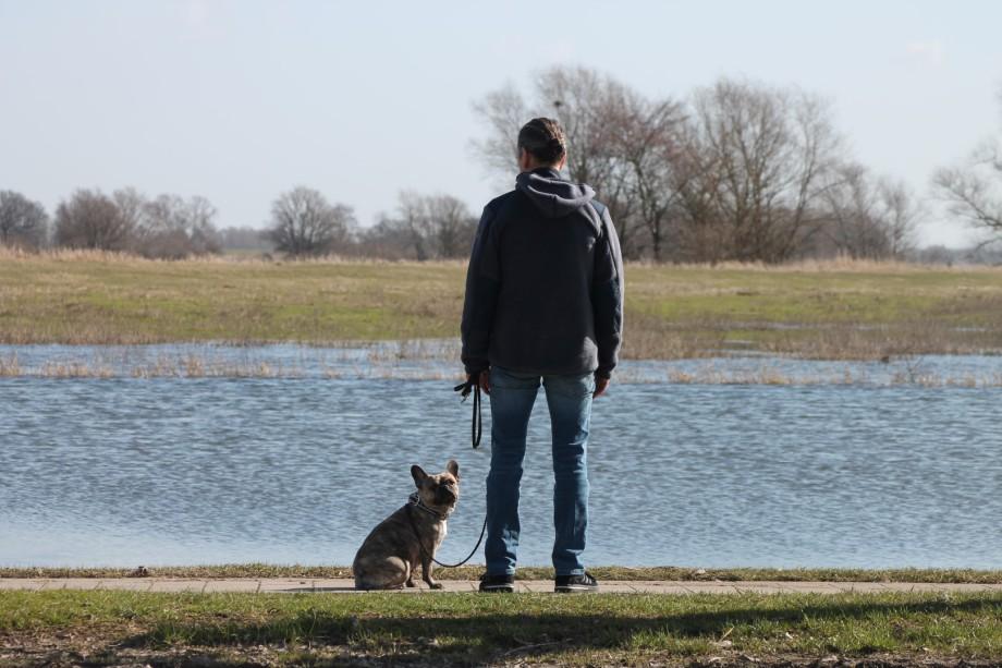 Axel und Hund an der Elbe